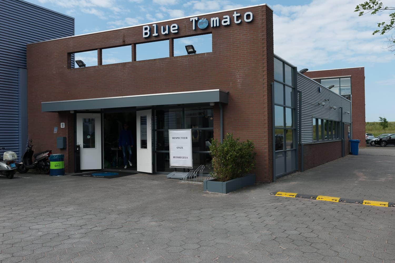Over de Blue Tomato Coffeeshop in Hoorn